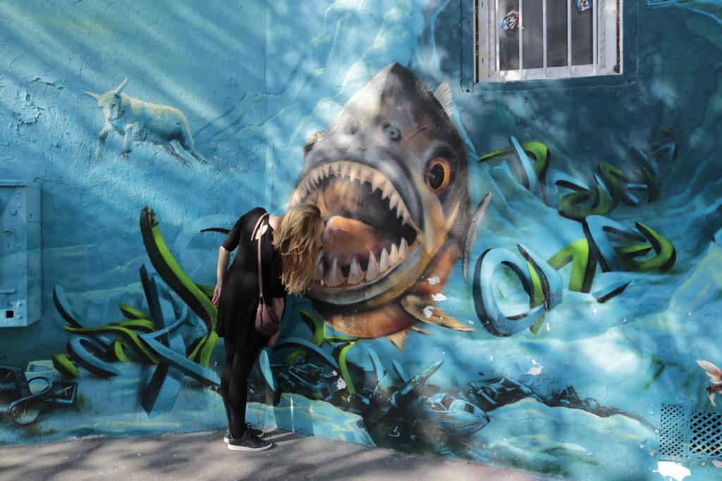 Balades street-art dans Paris pour petits et grands avec Camille de Voulez-vous Paris avec moi ?